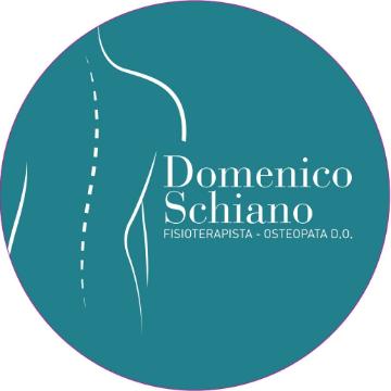 studio osteopatia fisioterapia domenico schiano logo