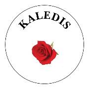 kaledis logo