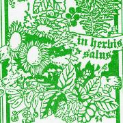 Erboristeria alpestre logo