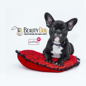 Beauty Dog logo