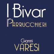 IBIVAR di Gianni Varesi logo