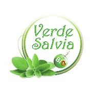 Verdesalvia Bio logo
