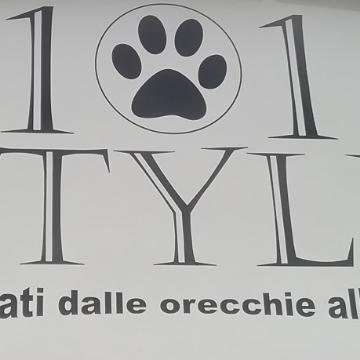 101 style snc logo