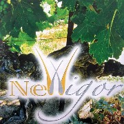 NewIgor logo