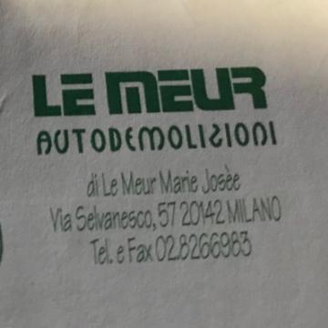LEMEUR AUTORICAMBI USATI logo
