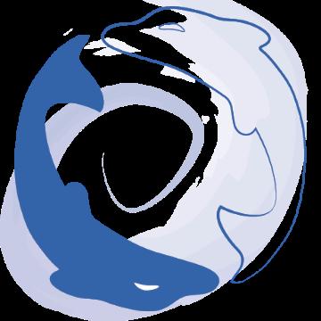 Diego calleri massaggiatore logo