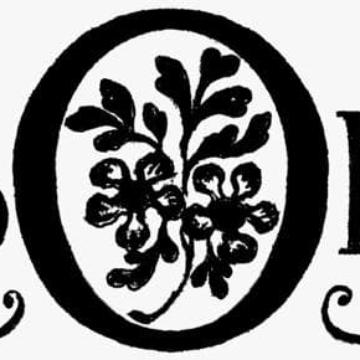 Nerboruta Azienda Agricola logo