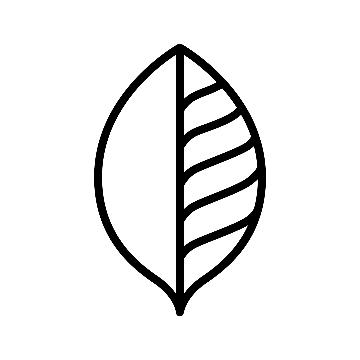 The Longevity Suite logo