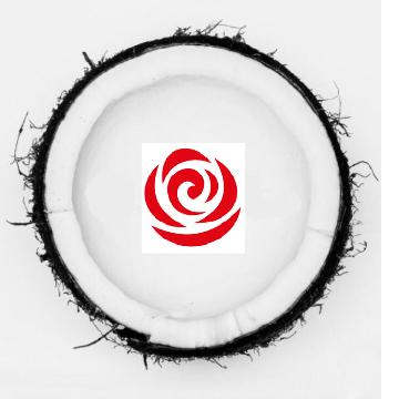 Rosso Make up logo