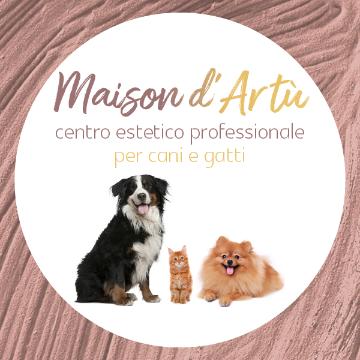 Maison D'Artù logo