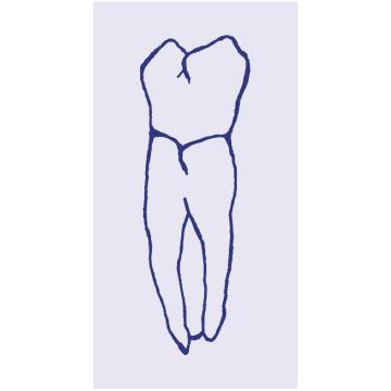 centro odontoprotesico tibaldi logo