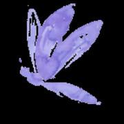 Nuvole di Fumo di Bozzola Alessandra logo