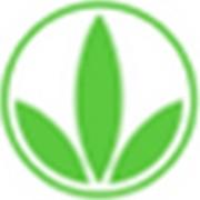 HLifepoint logo